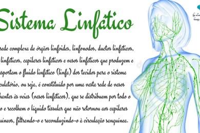 Protocolos Avancados Em Estetica Luciana Marques