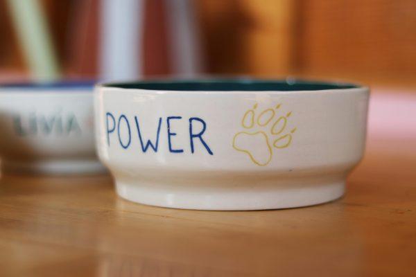 Gamelle pour chat ou chien en céramique coloré avec prénom gravé