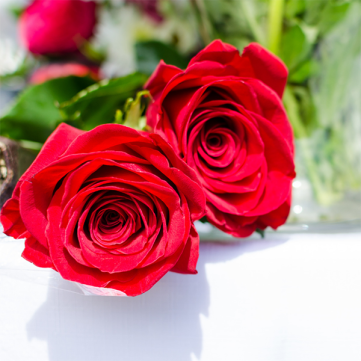 Image of roses to give loved one on a Valentine's Day Budget
