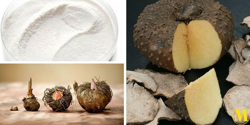 Konjac (Glucomannano) – la gelatina vegana