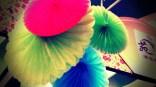 fan bloom