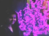 swati in purple