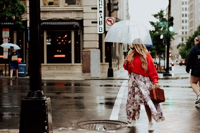 Things to do in D.C. When it's Raining. See-through umbrella.