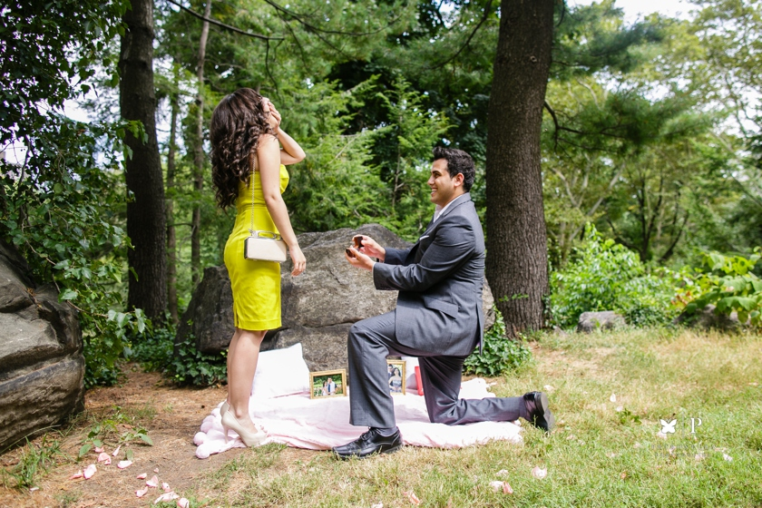 Lebanese multicultural proposal with Verragio ring in Central Park New York (22)