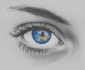Eyes Connected to The Mind (Food for Thought) - By Pistis
