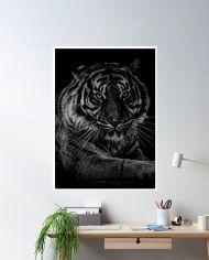 ins-lion-dark