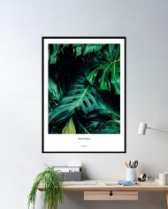 ins-monstera-framed