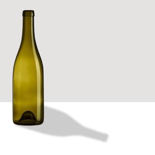 Bourgogne Classic Domaine