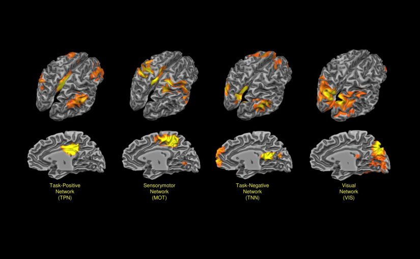 The Hard Problem of Consciousness: A Cognition Problem?