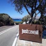 Just Cavalli Porto Cervo