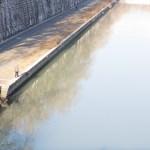 En mand går på fortorvet langs Tiberen, hvor træerne spejler sig ii vandet. Set oppefra.