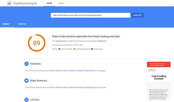 Screenshot 89 Google Pagespeed Score Lazy Loading Example