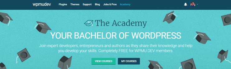 theacademy website screenshot