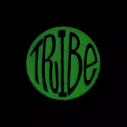 stussy-tribe