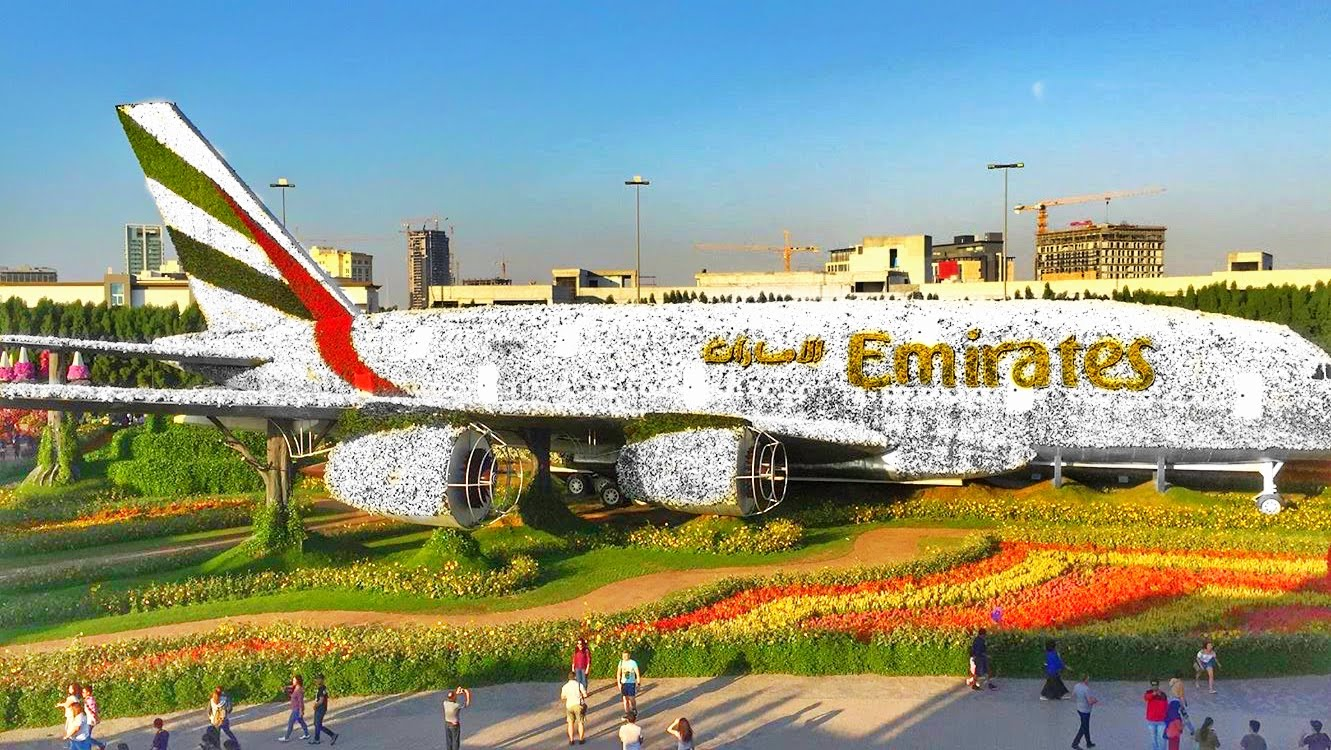dubai travel experience - floral emirate plane