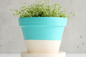 diy mother's day gift color block pots