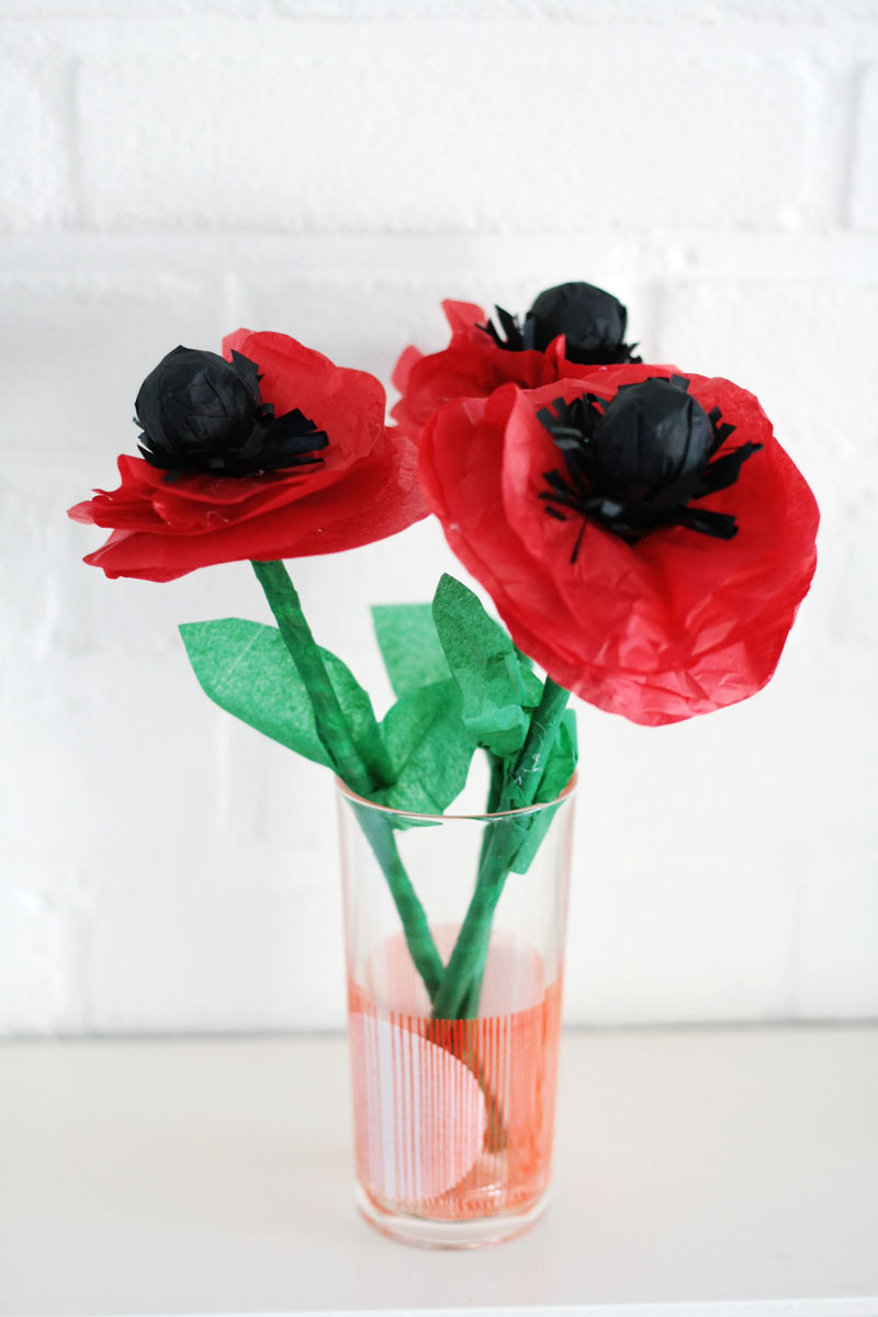 Make these cute lollipoppies with a lollipop, tissue paper and a paper straw. They would make a great favor for your next party!