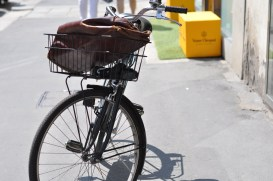 bicycle29