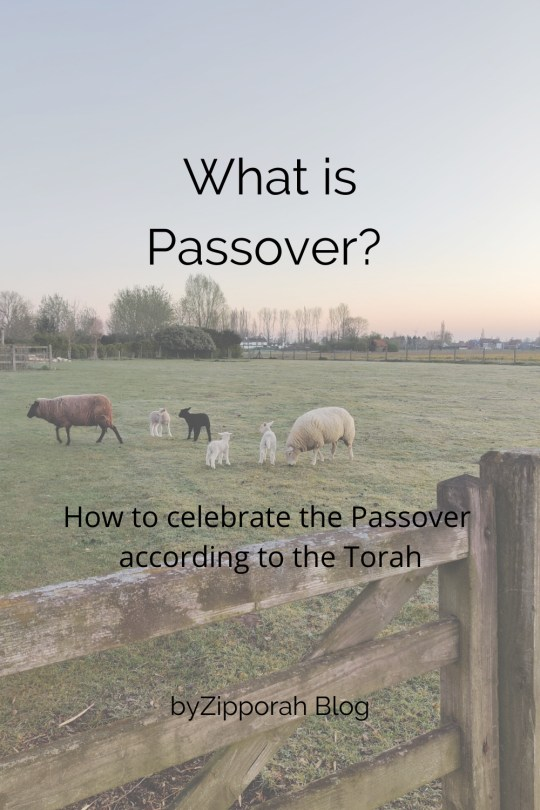 How to celebrate Passover according to the Torah?