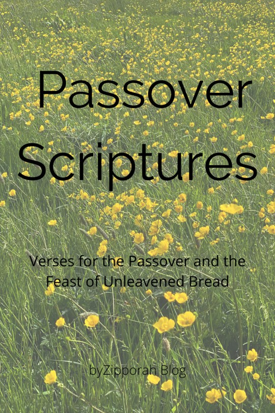 Scripture Reading for Passover