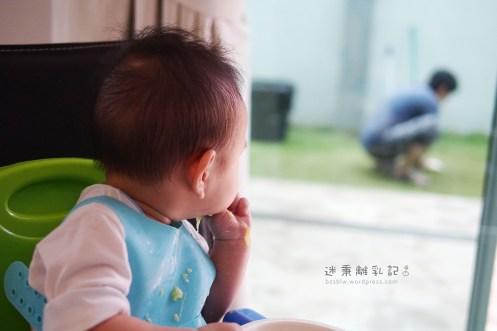 迷秉不時回頭望向窗外阿嬤蹲在草地裡剪草的身影。