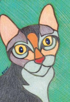 tortoise shell tabby torbie cat drawing