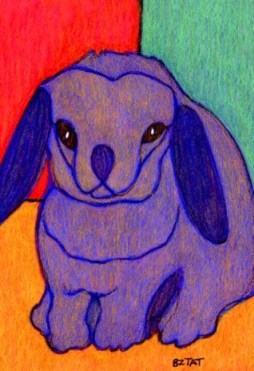 Rabbit-bunny-colorful-drawing-BZTAT