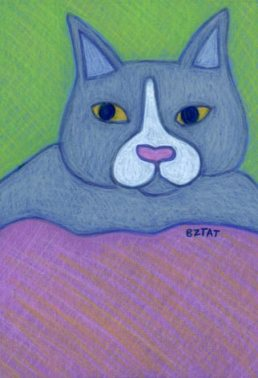 Gray-white-tuxedo-cat-drawing-BZTAT
