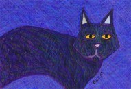 Black cat drawing by BZTAT