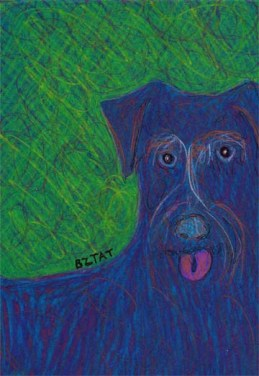 Black schnauzer mix dog drawing by BZTAT