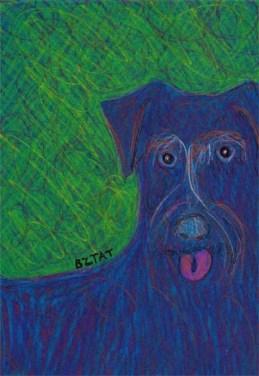 Black schnauzer mix dog drawing by BZTAT