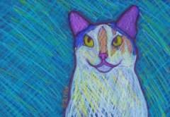 Calico Cat Custom Pet Portrait Drawing by BZTAT