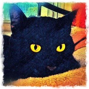 """""""Isis"""" black cat digital pet portrait by BZTAT"""