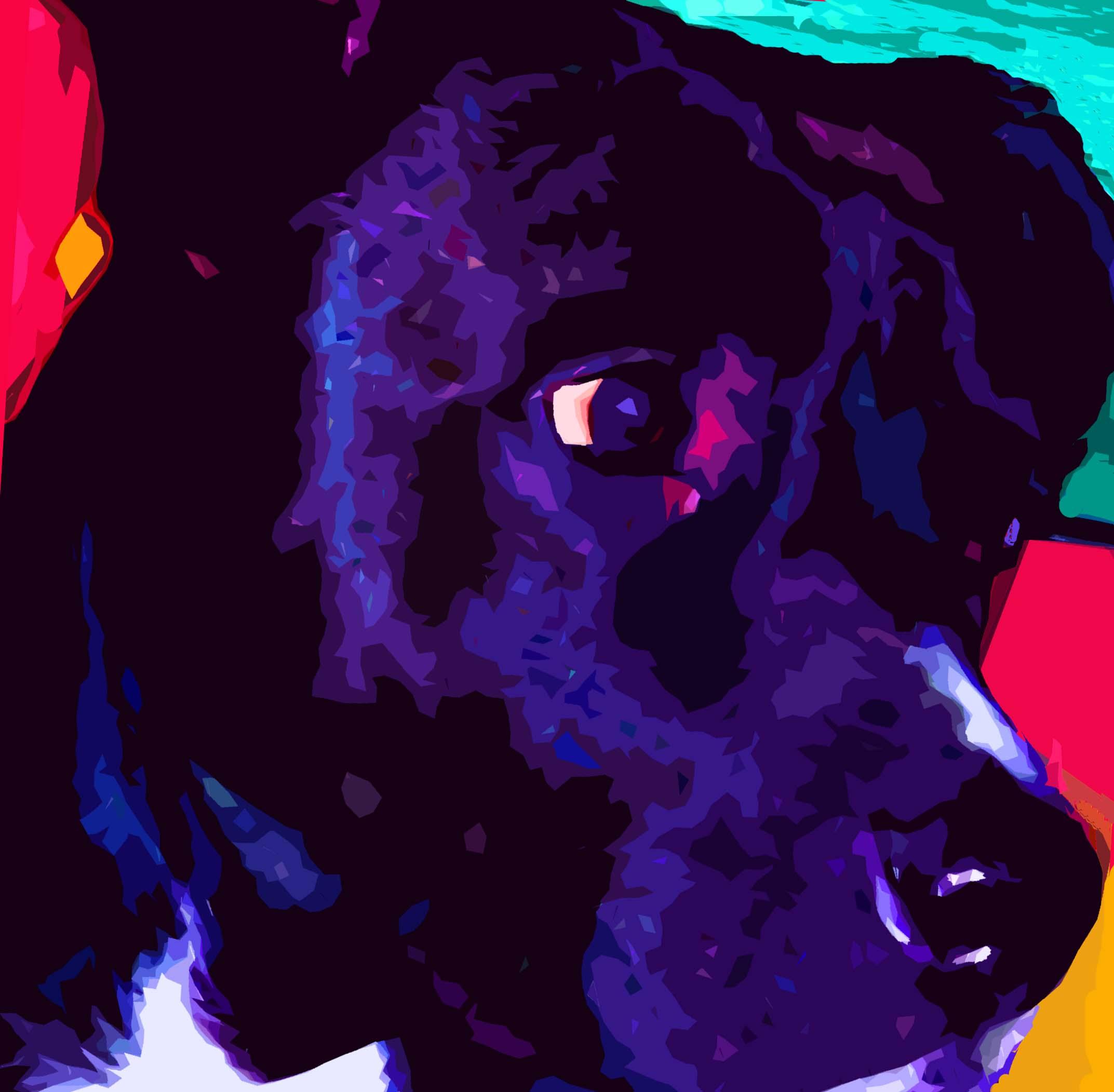 Black Pit Bull Mix Dog - Custom Digital Fine Art Pet Portrait by Animal Artist BZTAT