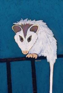 Possum urban wildlife painting contemporary pop art BZTAT