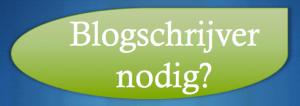 SEO-blogs doen je scoren in Google