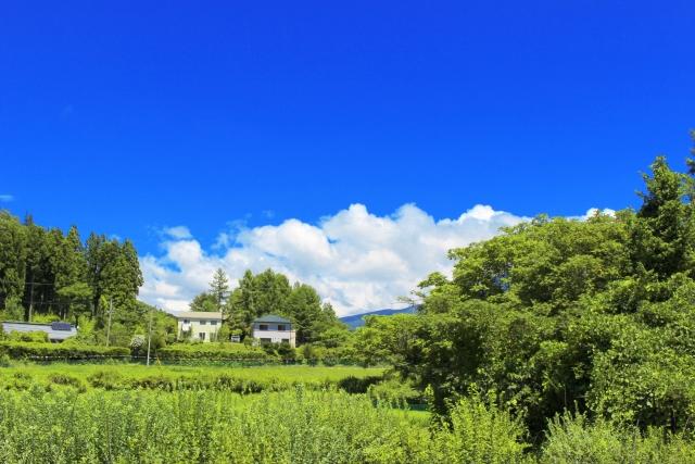 青空が広がる緑いっぱいの田舎の風景