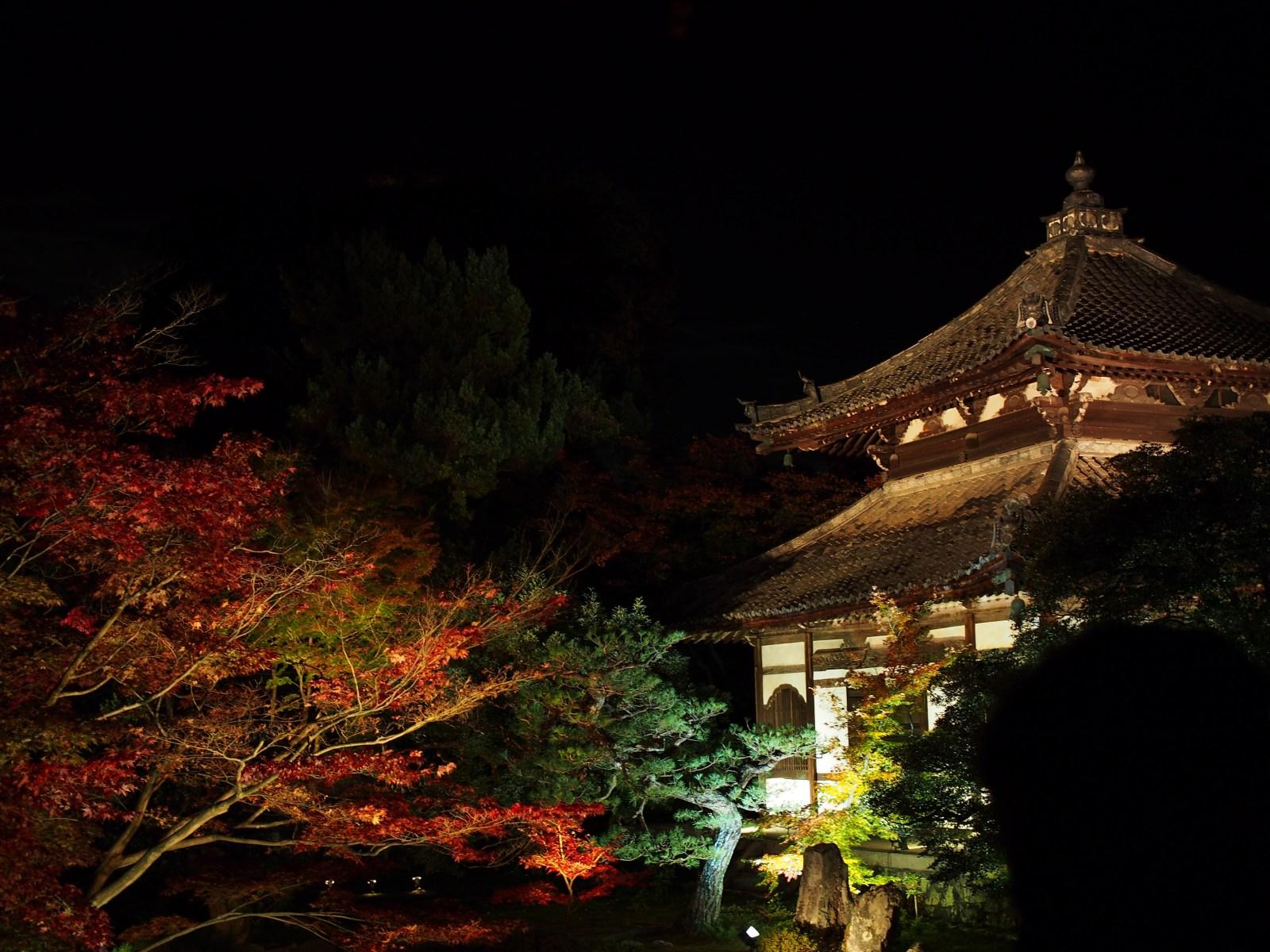 鹿王院夜間ライトアップ内覧会