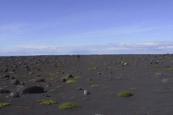 Surtsey 7