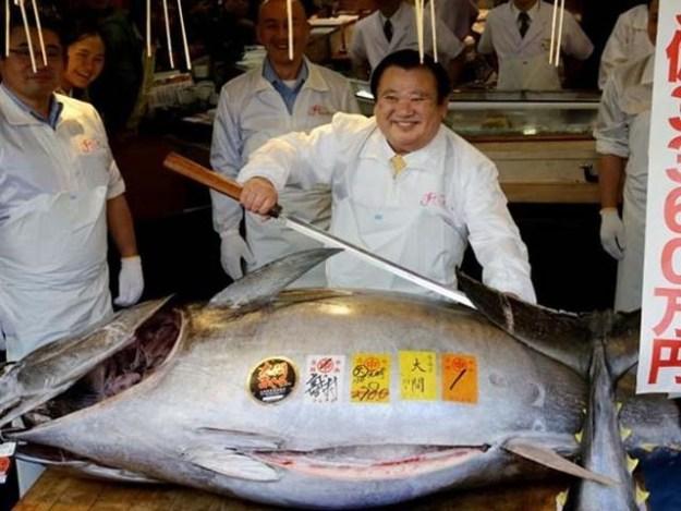 یہ مچھلی 278 کلو وزنی ہے اور اب تک فروخت ہونے والی مچھلیوں میں سب سے مہنگی ہے۔ فوٹو : فائل