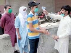 کورونا وبا نے ملک میں مزید 23 افراد کی جان لے لی