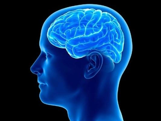 ایک طرح کے طبی فاقے، یعنی انٹرمٹنٹ فاسٹنگ سے دماغی خلیات بڑھتے ہیں اور یادداشت بہتر ہوسکتی ہے۔ فوٹو: فائل