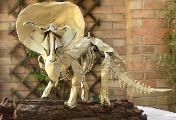 An Origami Triceratops Skeleton (Issei Yoshino) with modifications to the tail, ribs and neck.