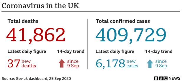 UK virus cases and deaths