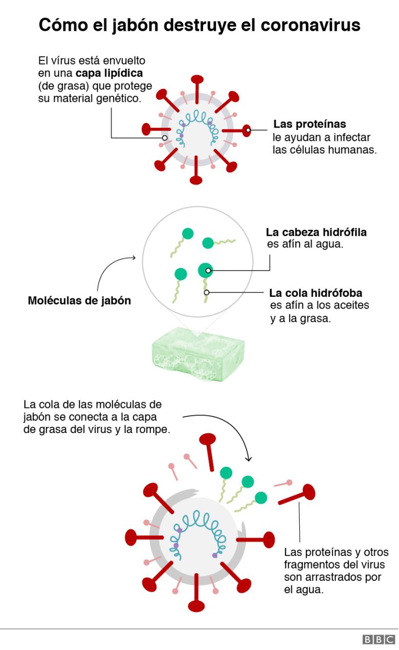 Jabón y coronavirus