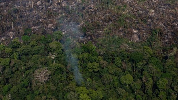 A part of the Amazon rain forest that has been destroyed by wildfire