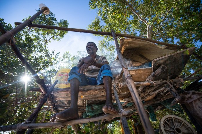 A portrait showing a fisherman sitting on a stilted structure in a mangrove forest