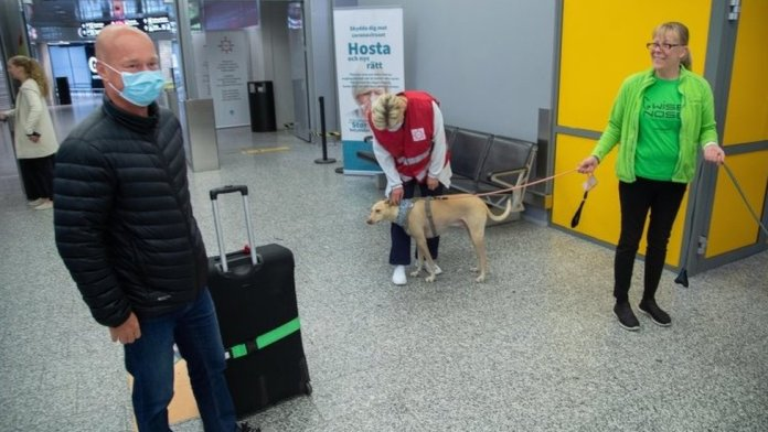 A passenger prepares to be examined by a dog in Helsinki