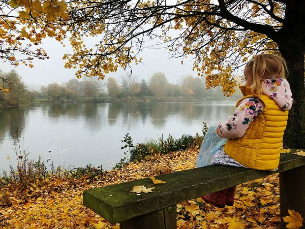 Child on a bench in woods