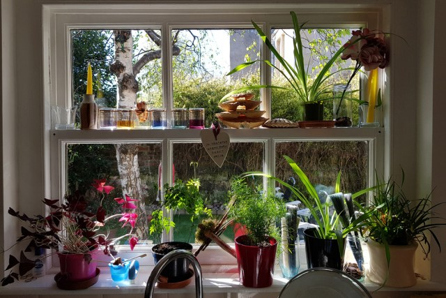Plant pots and other items on a window sill
